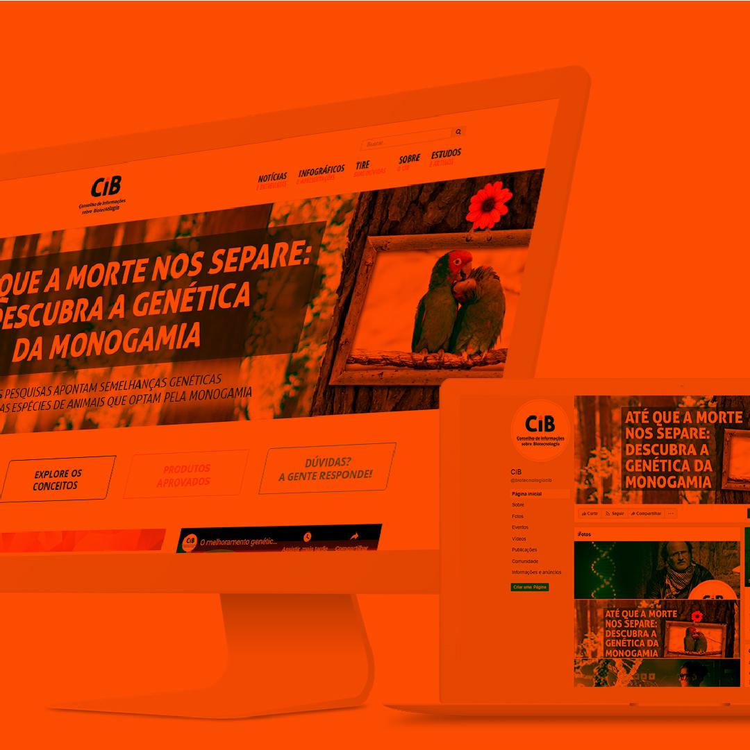 Imagem portfolio